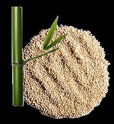 3 fórmulas enriquecidas com extratos de plantas