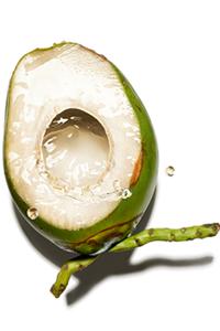 Água de coco bio