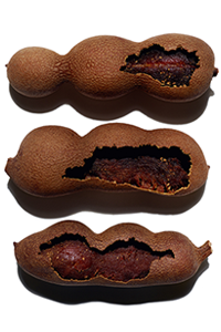 Ácidos da polpa de tamarindo