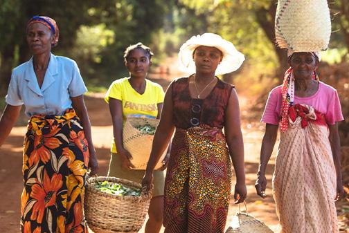 Mulheres com sacos de plantas em Madagáscar