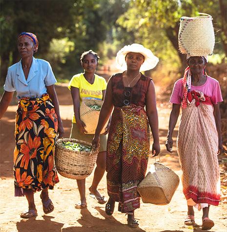 Fotografia de mulheres a transportarem sacos