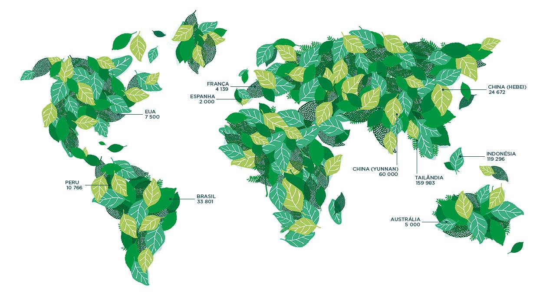 árvores em todo o mundo